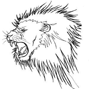 roaringlion